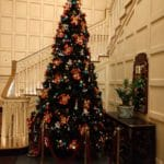 Christmas Disneyland Paris - New Port Bay Club tree