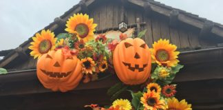 Disneyland Paris - Halloween 2017 - Cotton Creek Ranch & Frontierland