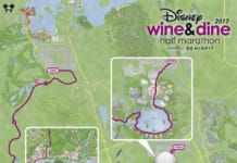 Walt Disney World Resort - Wine and Dine 21k 2017