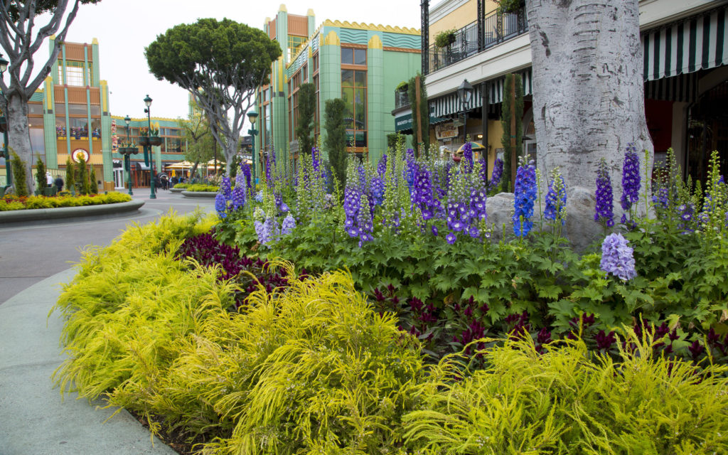 Disneyland Resort - Downtown Disney (2)