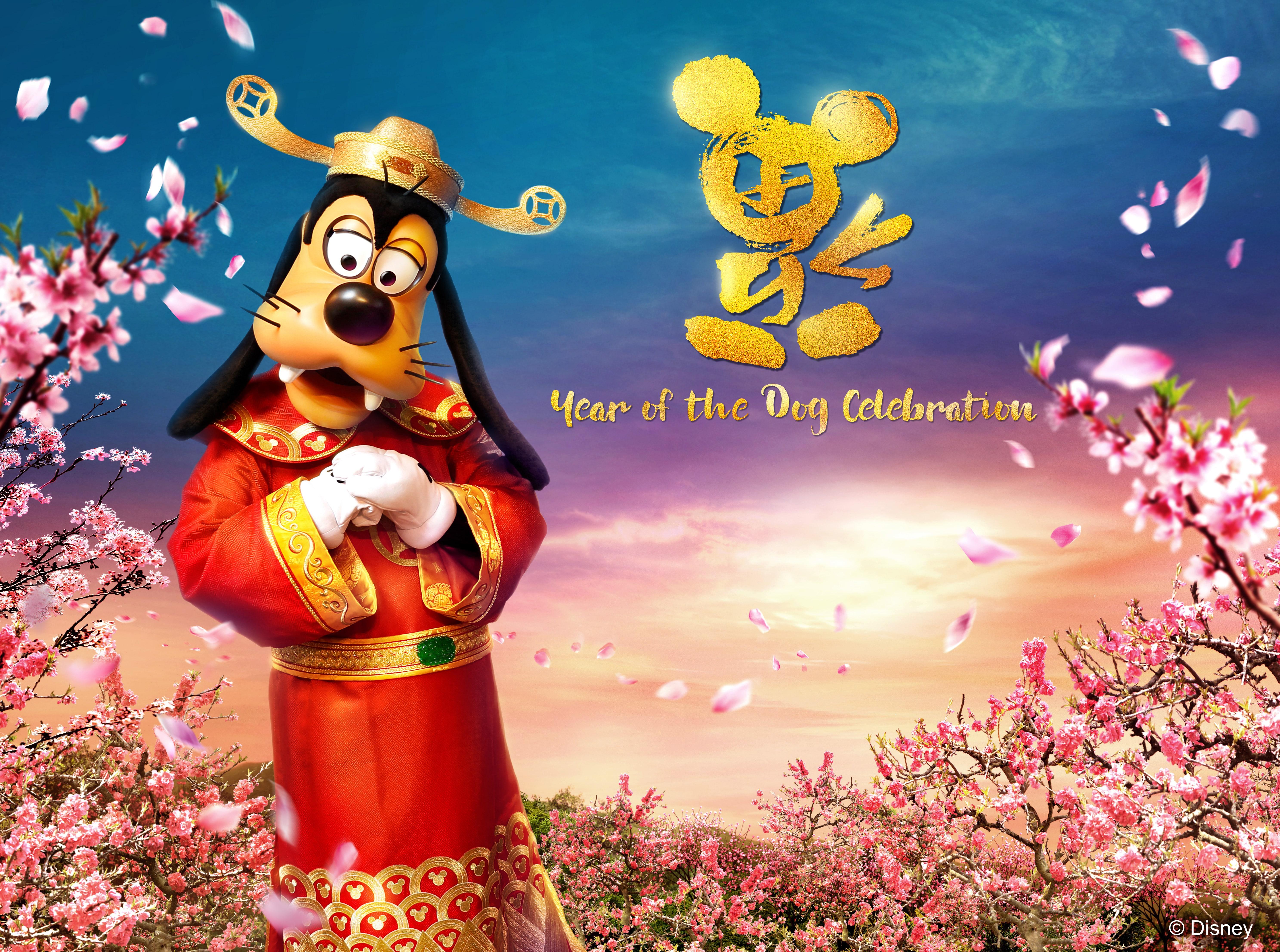 year of the dog celebrations at hong kong disneyland resort travel to the magic