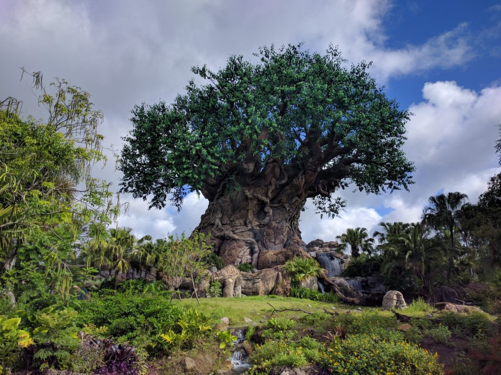 Walt Disney World - Animal Kingdom - Tree of Life