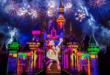 Together Forever – A Pixar Nighttime Spectacular - Miguel Coco