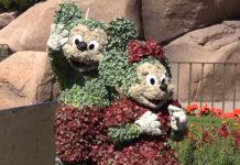 Walt Disney World Resort - Epcot - Mickey Minnie Living Topiaries