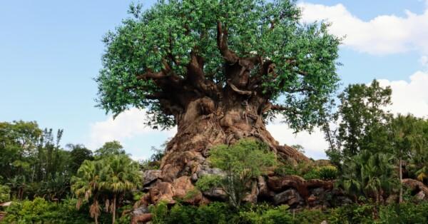 Animal Kingdom - Tree of Life